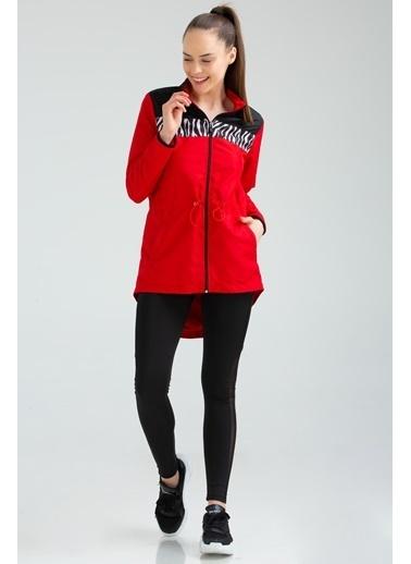Speedlife Obedient Kadın Sweatshirt Kırmızı